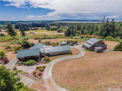 Oak Harbor Single Family Home For Sale: 486 W Henni Rd