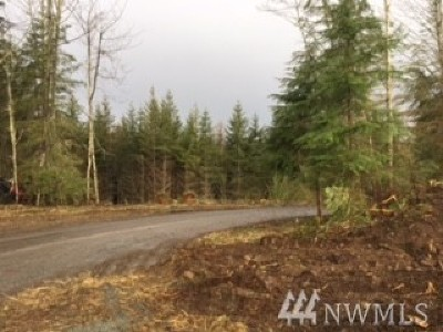 Eatonville Residential Lots & Land For Sale: 160th Ave E