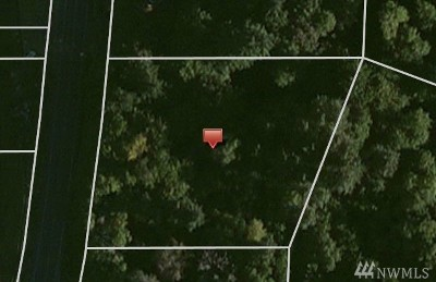 Residential Lots & Land For Sale: Hwy 106