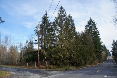 Eatonville Residential Lots & Land For Sale: 35121 72nd Ave E
