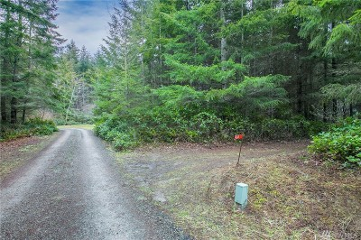 Residential Lots & Land For Sale: 424 Skywater Dr