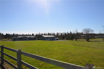 Stanwood Single Family Home For Sale: 32322 Brandstrom Rd