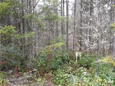 Mason County Residential Lots & Land For Sale: 21 N Beaver Place S