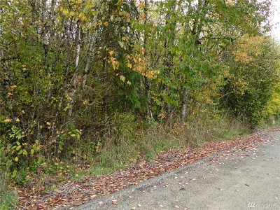 Residential Lots & Land For Sale: 41 Alfredson Rd