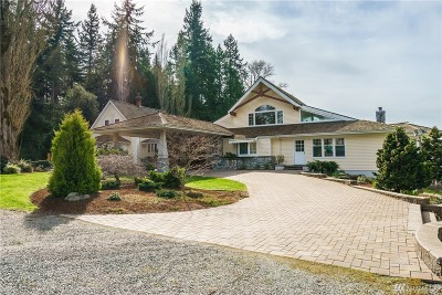 Stanwood Single Family Home For Sale: 19381 County Line Rd