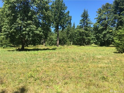 Tumwater Residential Lots & Land For Sale: 7034 Littlerock Rd SW