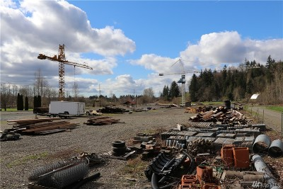 Whatcom County Residential Lots & Land For Sale: 4208 Mt Baker Hwy