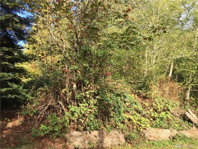 Snohomish County Residential Lots & Land For Sale: 93 Tulalip Wy