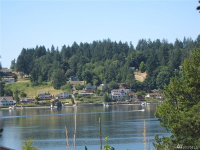 Gig Harbor WA Residential Lots & Land For Sale: $275,000