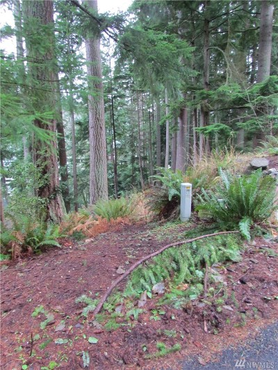 Whatcom County Residential Lots & Land For Sale: 21 Hawks Hill Place