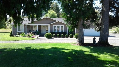 Tenino Single Family Home For Sale: 5441 Churchill Rd SE
