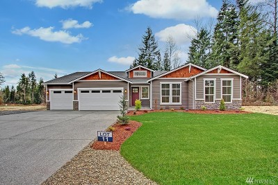 Lake Stevens Single Family Home For Sale: 11602 88th St NE