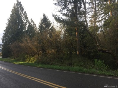 Residential Lots & Land For Sale: Marble St SW