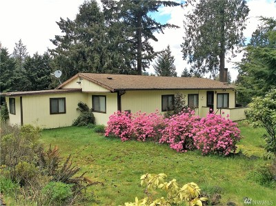 Lake Tapps Single Family Home For Sale: 20120 3rd St E