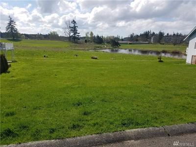 Residential Lots & Land For Sale: 4789 Golf Course Dr