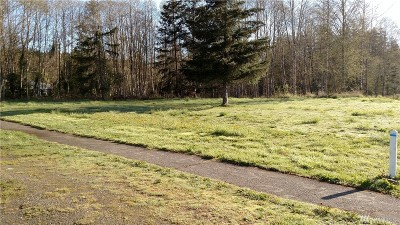 Residential Lots & Land For Sale: N Summit Rd