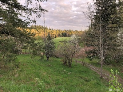Enumclaw Residential Lots & Land For Sale: 37404 304th Wy SE