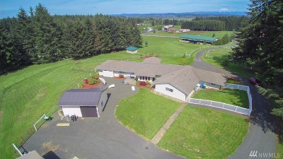 Chehalis Single Family Home For Sale: 216 Frogner Rd