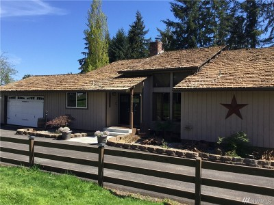 Chehalis Single Family Home For Sale: 265 Curtis Hill Rd
