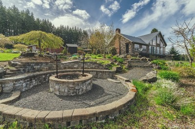 Chehalis Single Family Home For Sale: 243 Macronovic Rd