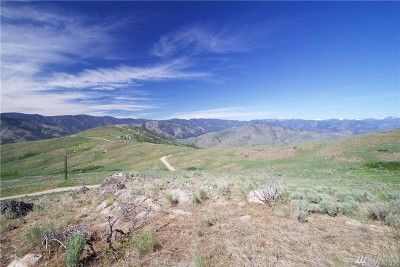 Residential Lots & Land For Sale: Lot 58 Methow River Ranch