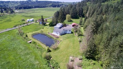 Centralia Single Family Home For Sale: 2245 Salzer Valley Rd