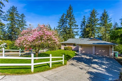 Lake Tapps Single Family Home For Sale: 16603 31st St E