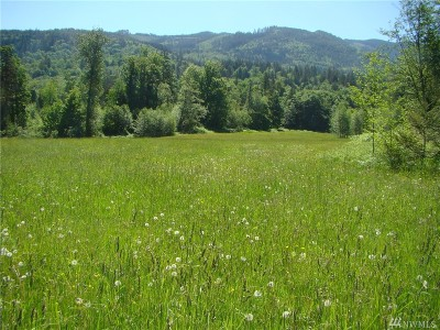 Sumas Residential Lots & Land For Sale: 8364 Westergreen Rd