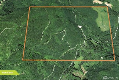 Residential Lots & Land For Sale: Blue Mountain Rd.