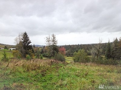 Residential Lots & Land For Sale: 140 Lost Creek Lane