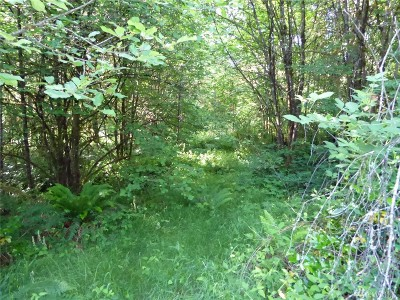 Residential Lots & Land For Sale: 16700 Sargent Rd SW