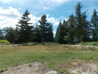 Residential Lots & Land For Sale: 17906 Danby Dr SW