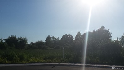 Lynden Residential Lots & Land For Sale: 128 Terrace Dr