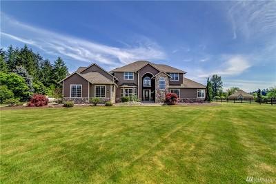 Spanaway Single Family Home For Sale: 26103 9th Av Ct E