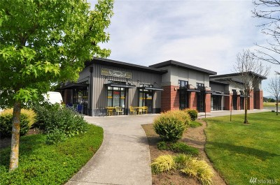 Bellingham WA Commercial For Sale: $3,995,000