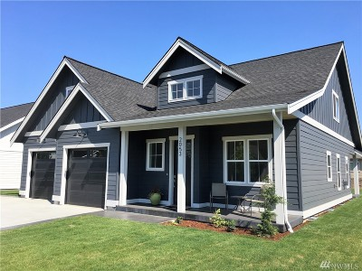 Lynden Single Family Home For Sale: 2053 Brome St