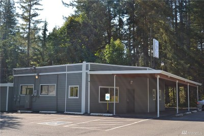 Mason County Commercial For Sale: 22090 N Us Highway 101
