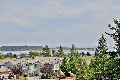 Oak Harbor Condo/Townhouse For Sale: 730 19th Ct #B-3