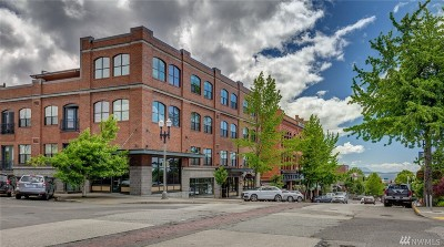 Condo/Townhouse Sold: 1224 Harris Ave #309