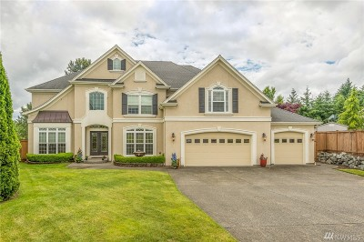 Lake Tapps Single Family Home For Sale: 17002 28th St E