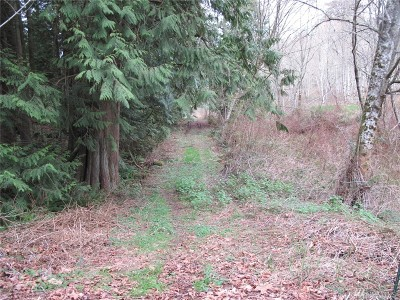 Residential Lots & Land For Sale: 2003 SE 8th St