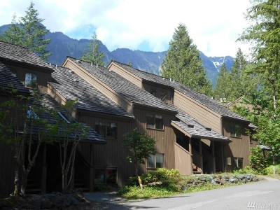 Glacier Condo/Townhouse Sold: 10500 Mt Baker Hwy #1201
