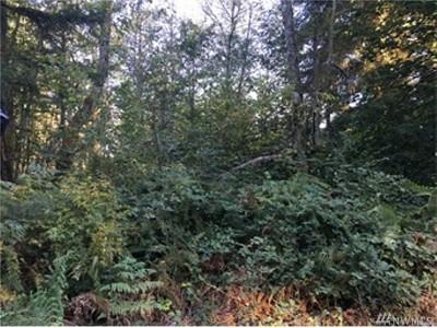 Eatonville Residential Lots & Land For Sale: 36120 108th Av Ct E