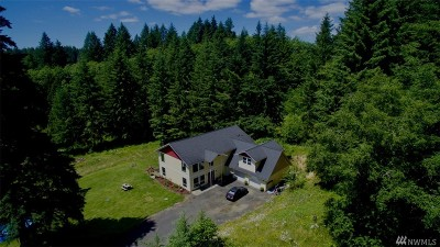 Winlock Single Family Home For Sale: 216 S Hawkins Rd
