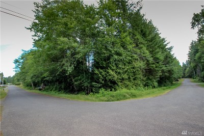 Residential Lots & Land For Sale: 321 E Ballycastle Wy