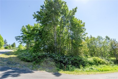 Blaine Residential Lots & Land For Sale: 1111 Oertel Dr