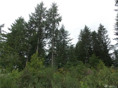 Residential Lots & Land For Sale: 199th Ave SE