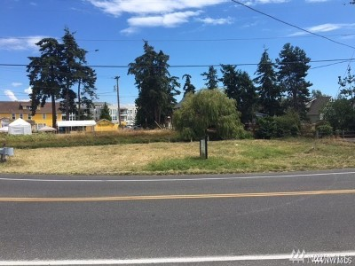 Birch Bay Residential Lots & Land For Sale: 7582 Birch Bay Drive