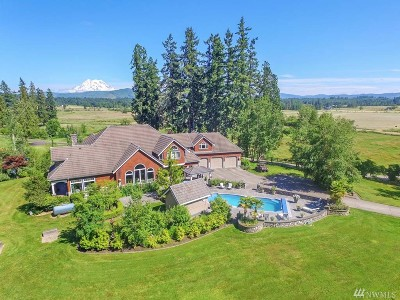 Pierce County Single Family Home For Sale