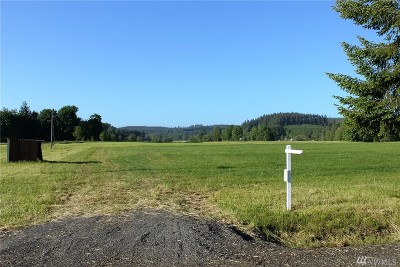 Residential Lots & Land For Sale: 701 Bunker Creek Rd